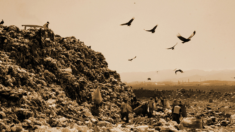 what is the waste land about
